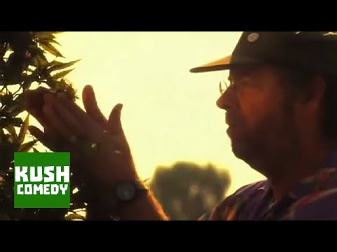 Weed Farmer - Totally Baked